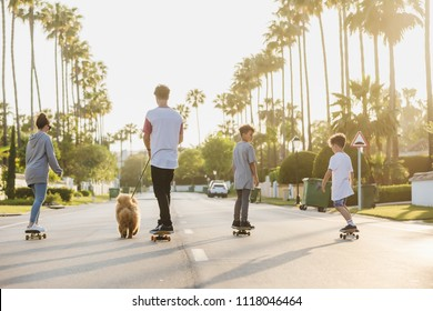 family (mother, father and two sons) with the dog riding away on skateboards on a street with palm trees on a background