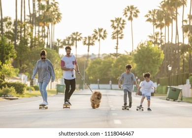 family (mother, father and two sons) with the dog from riding on skateboards and longboards on a street with palm trees and sunset on a background