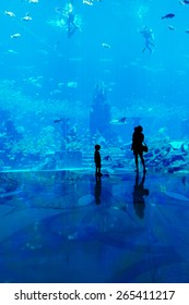 Family with mother and kids observe fish at the big aquarium