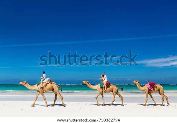 Family mother and kids riding camels at  tropical white sand beach