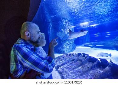 Family observing fish at the aquarium