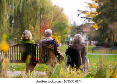 family in the park sitting on a bench, older woman sitting on a wheelchair, view from back