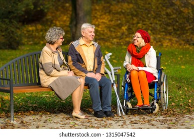 family in the park sitting on a bench and talking, girl on a wheelchair