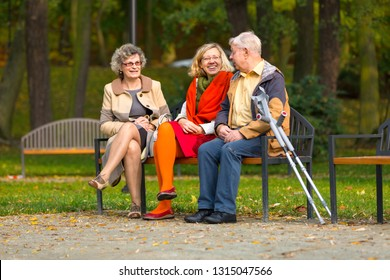 family in the park sitting on a bench watching birds