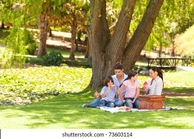 Family picnicking in the park