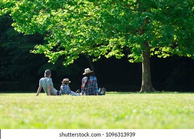 Família relaxante no gramado