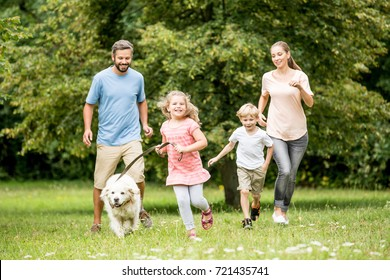 Family running with dog and having fun in summer