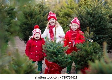 Family selecting Christmas tree. Kids choosing freshly cut Norway Xmas tree at outdoor lot Children buying gifts at winter fair. Boy and girl shopping for Christmas decoration at market. Holiday time.