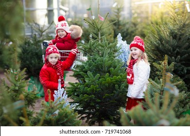 Family selecting Christmas tree. Kids choosing freshly cut Norway Xmas tree at outdoor lot Children buying gifts at winter fair. Boy and girl shopping for Christmas decoration at market. Holiday time