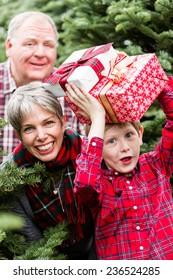 Family selecting a tree for Christmas at the Christmas tree farm.