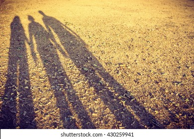 family shadow on the dried grasses in the park