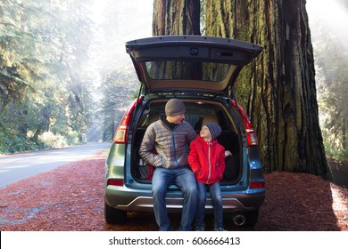 family sitting in the car's trunk resting after hiking in gorgeous redwood national park