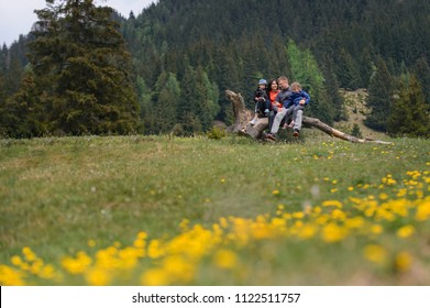 family sitting on old log and talking