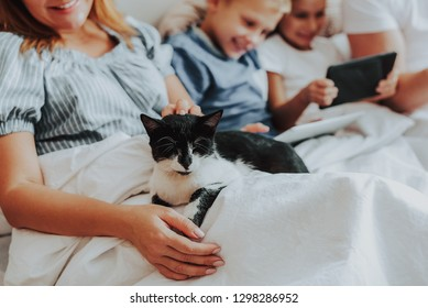 Family spending time together. Close up portrait of smiling woman holding sleeping cat on hands while laying on bed with husband and two children on background