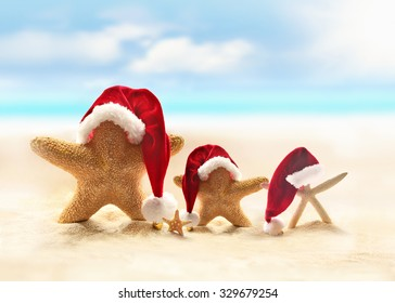 Family of starfish on summer beach and Santa hat. Merry Christmas