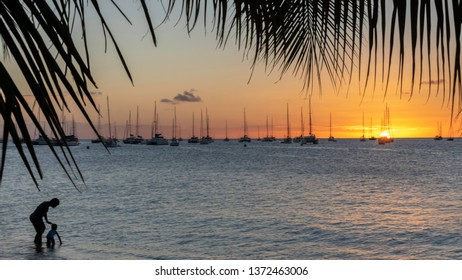 Family sunset in Sainte-Anne in Martinique