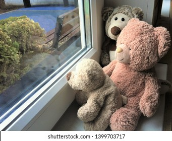Family of Teddy bears: brown Papa, pink Mama and beige bear cub  sit on the windowsill and look out of the room through the window, which is visible bench, green Bush and blue covering the playground
