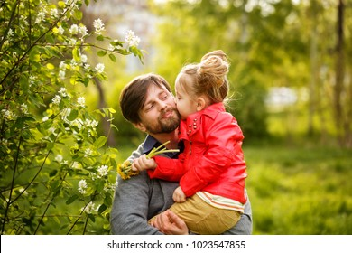 Family time. The father holds a small daughter in a leather jacket. She kisses him on the cheek. Spring walk