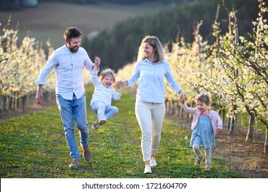Family with two small children running outdoors in orchard in spring.