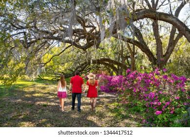 Family walking in the beautiful garden on weekend spring trip. Azaleas in bloom under oak tree. Magnolia Plantation and Gardens, Charleston, South Carolina, USA