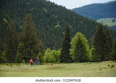 family walking at pine forest on hill