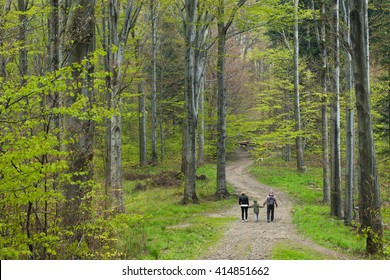 Family walking in spring forest