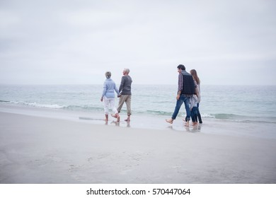 Family walking together on the beach on a sunny day