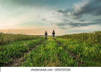 Family walks on the field at sunset