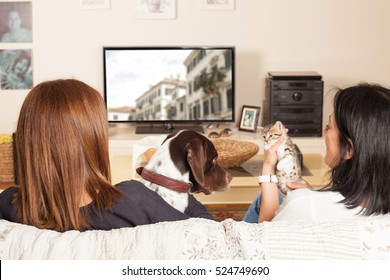family watching tv with pets