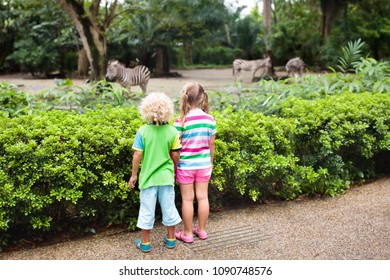 Family watching zebra in zoo. Boy and girl in tropical safari park during summer vacation in Singapore. Kids watch horse. Brother and sister learn about African savanna animals. Children outdoors.