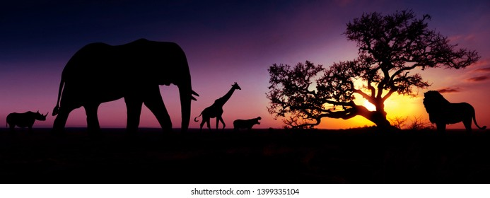 Famous african animals sunset silhouettes. Travel, wildlife and environment concept.