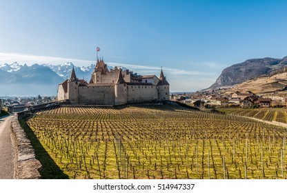 Famous Aigle Castle, Chateau d'Aigle, and vineyard in the spring. Aigle, Switzerland