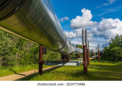 Famous Alaskan Pipeline near Fairbanks, AK, USA