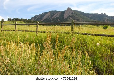 The famous and beautiful Flatiron mountains of Boulder, Colorado as seen from Chautauqua Park. The mountains can be seen behind tall green wild grass in the public park. A wooden fence is in the park.