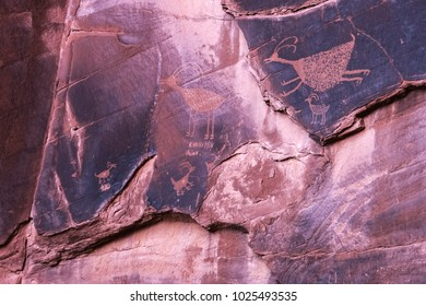 Famous carved anasazi petroglyphs representing animals in the Monument Valley Navajo Tribal Park, Arizona.