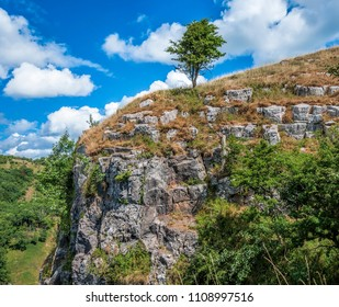 Famous Cheddar Gorge located in Somerset, England. The tree on the edge of the canyon with beautiful blue sky in the background.