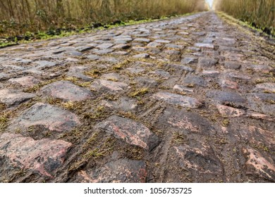 The famous cobblestone road from the forest of Arenberg (Pave d'Arenberg). Every year it is part of the route of Paris Roubaix one of the most famous one day road cycling race. Selective focus.