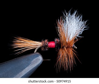 Famous dry fly called a Royal Wulff on a black background