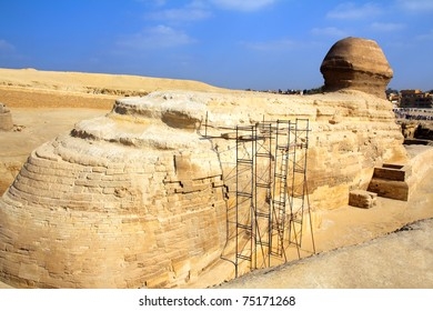 famous egypt sphinx in Giza - view from behind