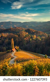 Famous Heart shaped wine road in Slovenia,  view from Spicnik near Maribor.
