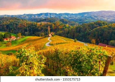 Famous heart-shaped wine route in beautiful autumn colors, wonderful vineyards near Maribor, close to the Austrian border in  Slovenia