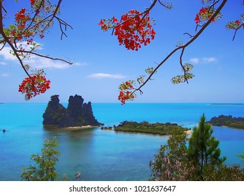 The famous Hienghene's Hen with beautiful Flamboyant tree flowers. An exceptional rock that looks like a hen, in the East coast of New Caledonia main island.