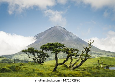 The famous Mount Pico, a volcano, on Pico Island, Azores, Portugal. against blue sky on a summer day