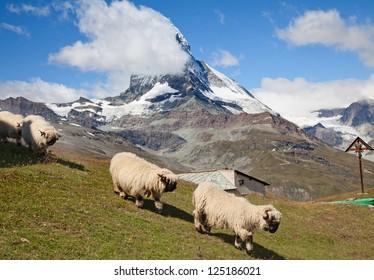 Famous mountain Matterhorn (peak Cervino) on the swiss-italian border