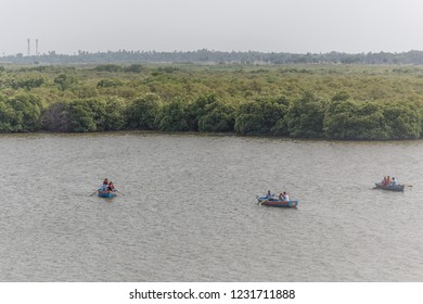 a famous place called Pichavaram is village near Chidambaram,Tamil Nadu, India,tourists spot for boating, caves of naturally formed thick mangrove forest.low light photography with selective focus.
