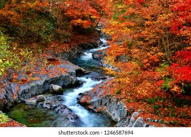 "Famous ravine ""Nakatsugawa ravine"" of Fukushima."