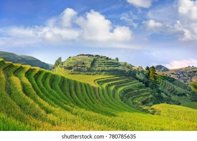 Famous rice terraces, beauty of nature, Longji, China