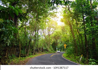 Famous Road to Hana fraught with narrow one-lane bridges, hairpin turns and incredible island views, curvy coastal road with views of cliffs, beaches, waterfalls, and miles of rainforest. Maui, Hawaii