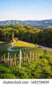 Famous Slovenian and Austrian heart shape wine road among vineyards of Slovenia. Scenic landscape and nature near Maribor in Slovenija. Unique tourism on green hills.