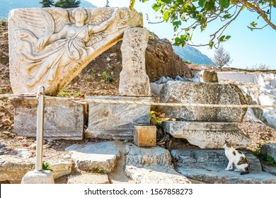 The famous stone carved statue of Nike, the Goddess of Victory, the UNESCO world heritage site of East Roman ruined empire Ephesus, Selcuk, Izmir, Turkey and a Turkish cat